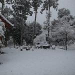 国束寺 雪